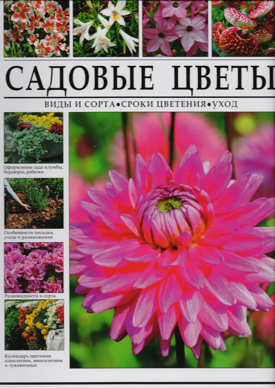 Энциклопедия садовых растений и цветов